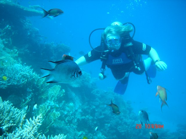 Red Sea fishes and me ;)