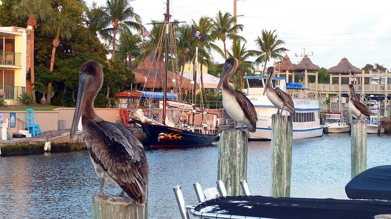 Key Largo, Floryda