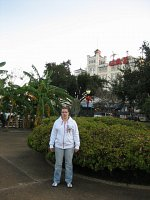 New Orleans - Park Amstronga