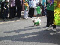Paddy's Day 2009 w Balbriggan